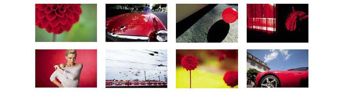 Suchen und Finden: Verschlagwortung von Fotos