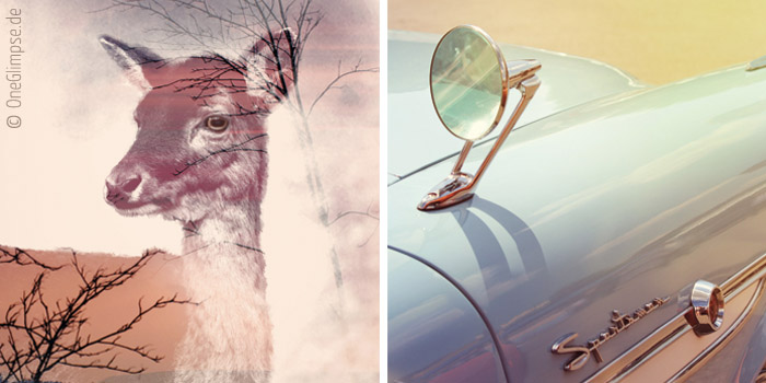 One Glimpse – Fotografie von Laura Kluczny